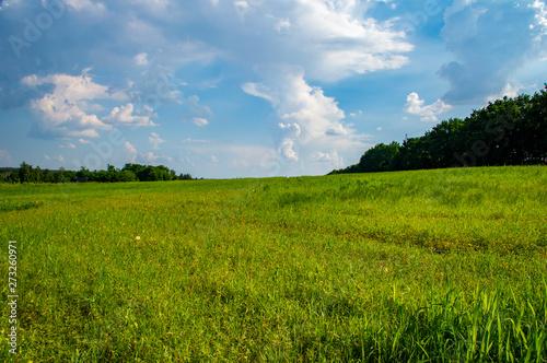 Foto auf Gartenposter Landschappen Natural landscape against the blue sky with clouds.