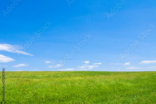 草原と大地と青空 シンプル背景 日本の北海道 Fototapet