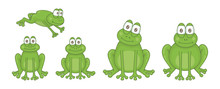 Set Of Frogs. Isolated On White Background