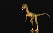 Dinosaur Compsognathus Standin...