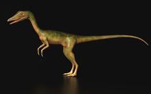 Compsognathus  Dinosaur Standi...
