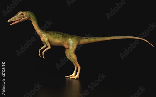 Fototapeta  Compsognathus  Dinosaur standing black background side vşew 3d render
