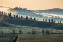Sunrise And Fog In Tuscany
