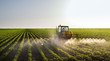 canvas print picture - Tractor spraying soybean field
