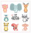 Cute nursery wild animal pastel hand drawn collection, llama, elephant, reindeer, owl, raccon, tiger, squirrel, monkey