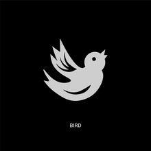 White Bird Vector Icon On Black Background. Modern Flat Bird From Nature Concept Vector Sign Symbol Can Be Use For Web, Mobile And Logo.