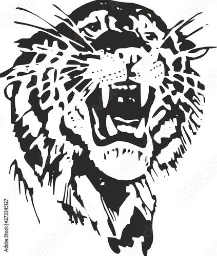 Tigre Wallpaper Mural