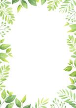 Floral Frame Template. Green Leaves Border. Vector Illustration.