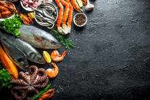 Variety Of Fresh Seafood.