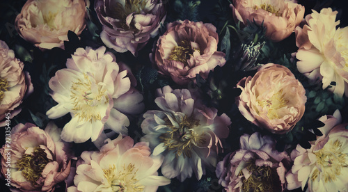 Poster Floral Vintage bouquet of beautiful peonies on black. Floristic decoration. Floral background. Baroque old fashiones style. Natural flowers pattern wallpaper or greeting card