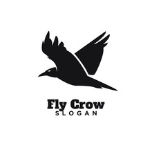 Raven Crow Fly Black Color Wit...