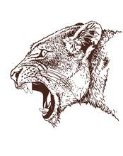 Graphical Vintage Portrait Of Puma,vector Sepia Illustration