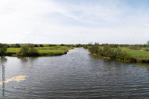 Countryside with canals and lakes in Ile de Re in France