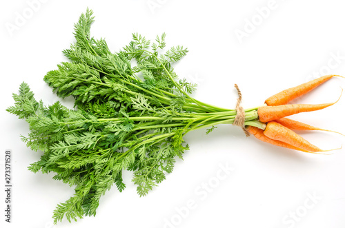 Garden Poster Plant Fresh carrots with green foliage on white background.