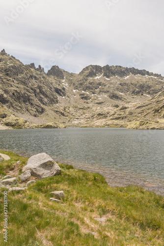 Photo sur Aluminium Kaki Details of the Regional Park of Gredos
