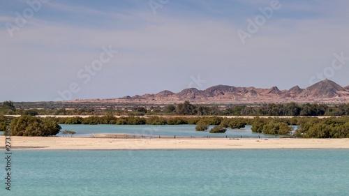 île de Sir Bani Yas aux émirats arabes unis Fototapete
