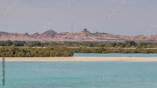 Stampa su Tela île de Sir Bani Yas aux émirats arabes unis