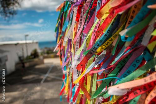 Fotobehang Paradijsvogel bloem Brazilian Bracelets