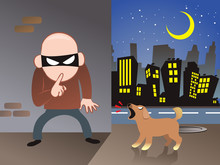 The Dog Is Barking The Thief. One Night In City Vector Illustration Background Cartoon
