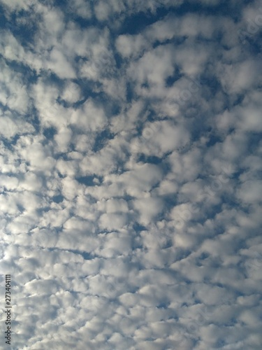 altocumulus clouds Wallpaper Mural