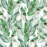 Piękny wzór akwarela z tropikalnych liści i liści banana. - 273415360
