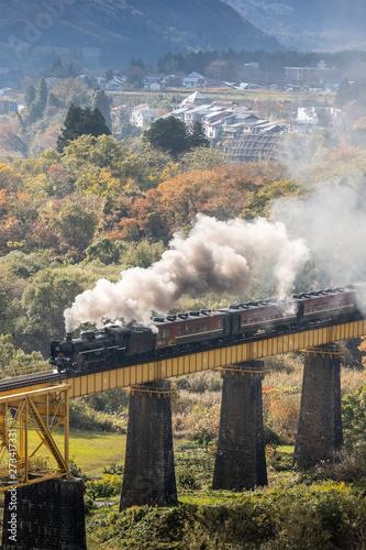 Fototapeta Steam locomotive train Is spraying smoke running through the iron bridge obraz na płótnie