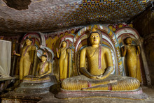Buddhas Lined Up In Dambulla C...