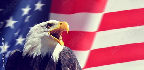 Poster Aigle Portrait of a North American Bald Eagle (Haliaeetus leucocephalus) in the background USA flag. United States of America patriotic symbols.