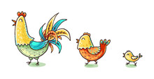 Colorful Cartoon Chicken Family, Colorful Vector Illustration