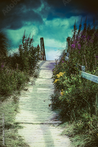 Canvas Print Beach path, Findhorn.