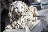 The statue of a sad lion at the entrance of the San Lorenzo Cathedral,Genoa, Italy