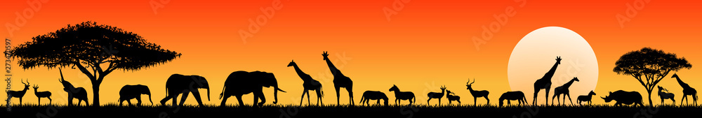 Fototapety, obrazy: African savanna animals at sunset. Silhouettes of wild animals of the African savannah