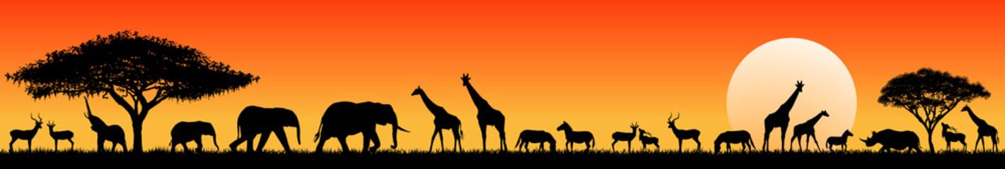 African savanna animals at ...