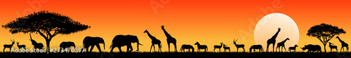 African savanna animals at sunset. Silhouettes of wild animals of the African savannah