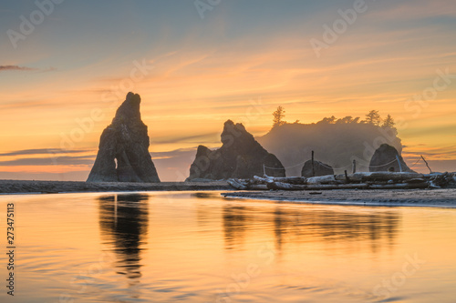Olympic National Park, Washington, USA at Rialto Beach. Wallpaper Mural