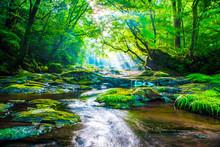 Kikuchi Valley, Waterfall And ...