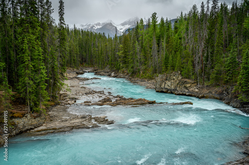 Natural Bridge and sinkhole rock formation over Kicking Horse River in Yoho Nati Wallpaper Mural