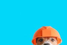 Safety, Construction, DIY Conc...