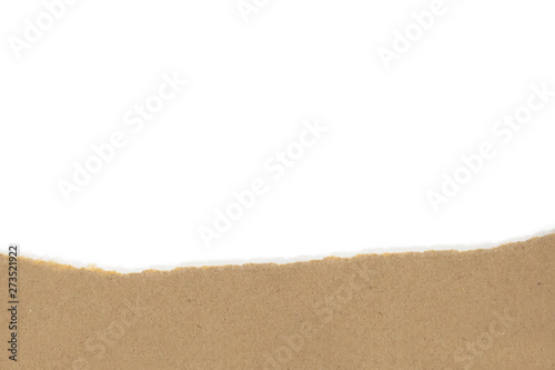 Valokuva  Isolated Torn Brown Package Paper with White Blank Copyspace