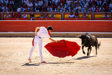 Young Bullfighter In Pamplona ...