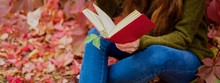 Girl In Blue Jeans Sitting Among Colorful Ivy In Autumn And Reading A Book In Red Cover