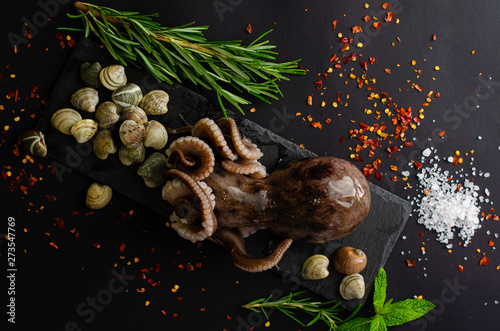 Vászonkép Raw octopus with clam shells, rosemary, pepper and salt is ready for cooking