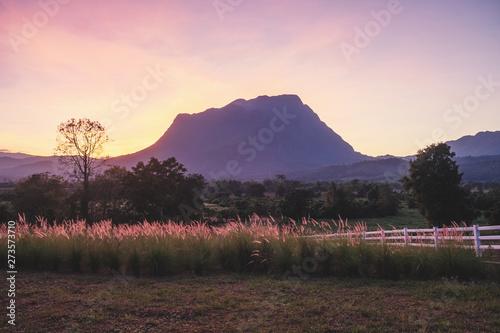Summer mountain hills landscape sunset in North of Thailand