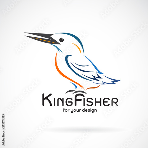 Vector of kingfishers bird(Alcedo atthis) on white background Fototapete