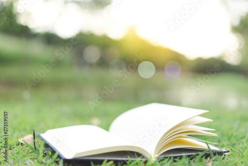 Fotobehang Olijf close up open book in nature summer season
