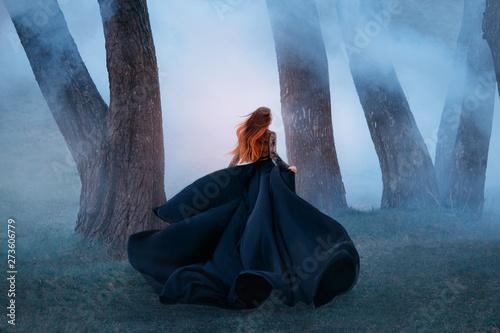 Fotografie, Obraz  black widow in a long dark silk lace dress, a girl with gorgeous light red hair