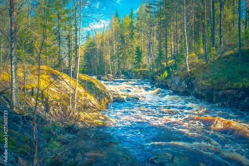 Canvas Prints Forest river River landscape from Sotkamo, Finland.