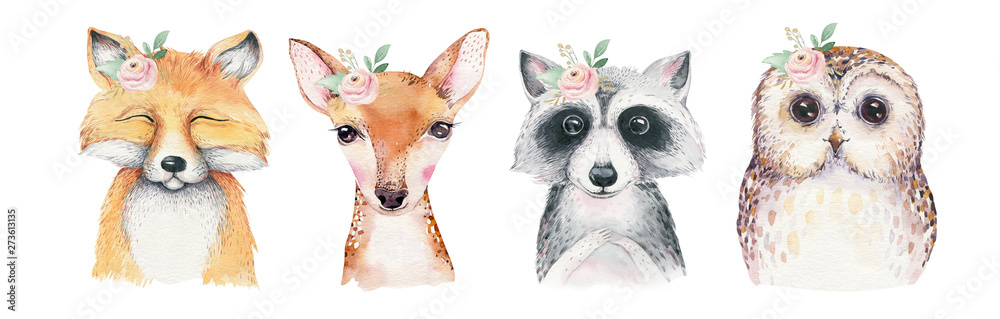 Fototapety, obrazy: Watercolor set of forest cartoon isolated cute baby fox, deer, raccoon and owl animal with flowers. Nursery woodland illustration. Bohemian boho drawing for nursery poster, pattern