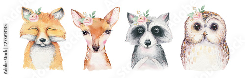Fotografia, Obraz Watercolor set of forest cartoon isolated cute baby fox, deer, raccoon and owl animal with flowers