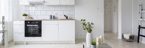 Αφίσα  Modern studio apartment with kitchenette